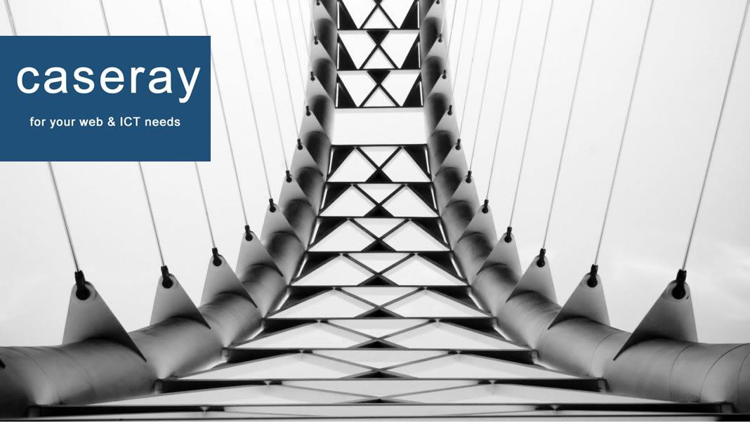 Caseray business digital transformation services